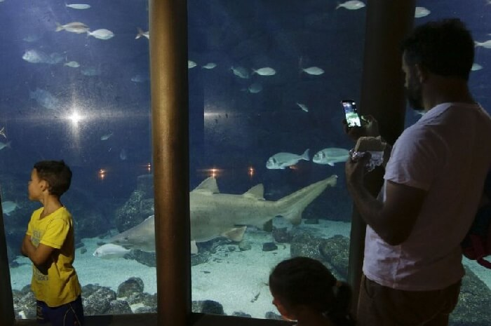 visita el aquarium de Finesterre