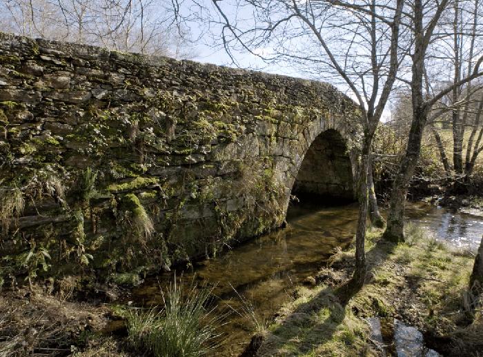ir al A Ponte Vella de Andón en Forcarei