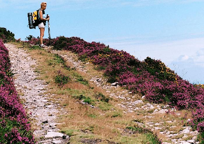 rutas para realizar el camino de santiago