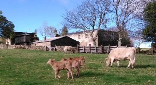listado completo de granjas escuela en Galicia